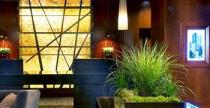 Hotel zöld dísze